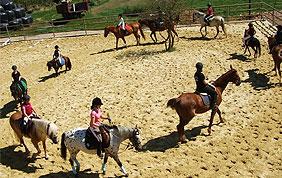 cours d'équitation enfants