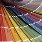 palette de couleurs peinture