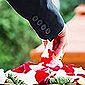 pétales de rose sur un cercueil