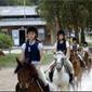 Clubs d'équitation à NAMUR
