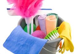 Faites appel aux aides ménagères de Domestic Services!