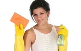 Aide ménagère produits entretien gants