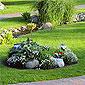 aménagement parterres pelouse