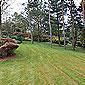 aménagement pelouse