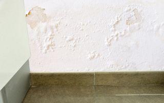 Problèmes d'humidité mur