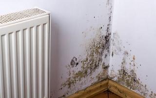 humidité coin de mur