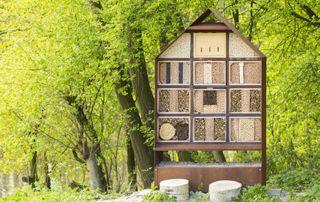 Construction avec des matériaux écologiques