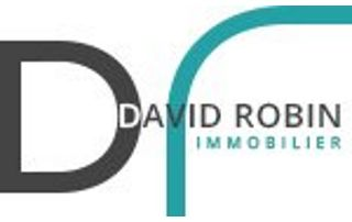 Logo David Robin