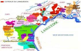 Les vins du Languedoc-Roussillon