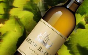 Les meilleurs vins blancs