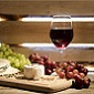 Négociants en vins