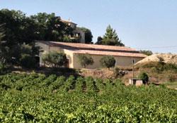 The Wine Agency: vente de vins en ligne