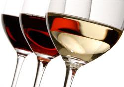 Grand choix de vins français chez TheWineAgency