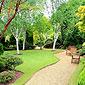 Allée et pelouse verte et soignée