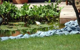 étang et terrasse