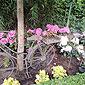 massif de fleurs dans charrette en bois
