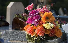 fleurs dans cimetière